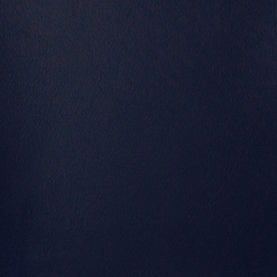 A4129 Midnight Blue Fabric