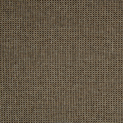 A4232 Earth Fabric