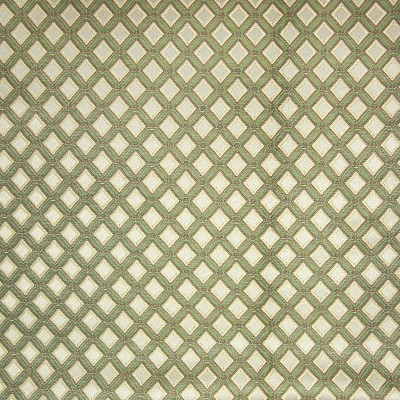 A4877 Avocado Fabric