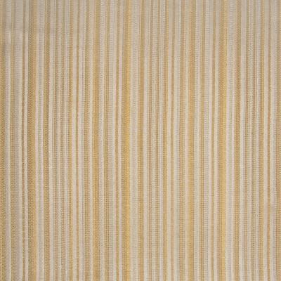 A4890 Caramel Fabric
