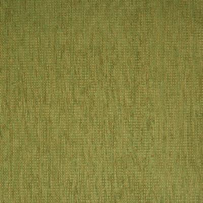 A5419 Fern Fabric