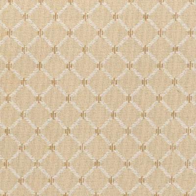 A6543 Ecru Fabric