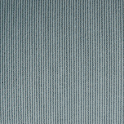A6829 Denim Fabric