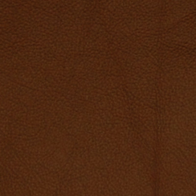 A7662 Saddle Fabric