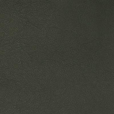 A7666 Charcoal Fabric