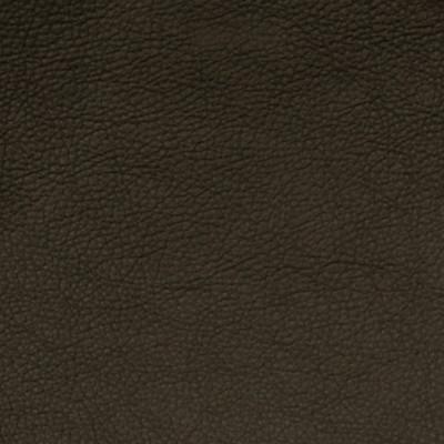 A7669 Graphite Fabric
