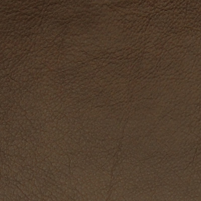 A7672 Basil Fabric
