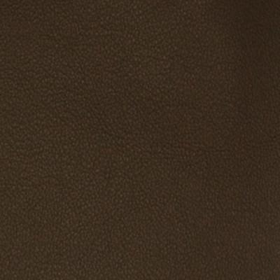 A7673 Chocolate Malt Fabric