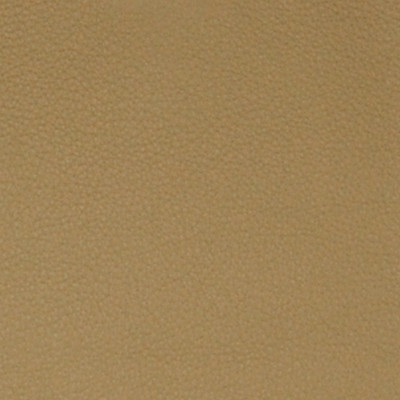 A7703 Peanut Fabric