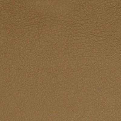 A7704 Soft Sable Fabric