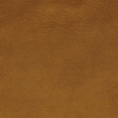 A7706 Honey Fabric