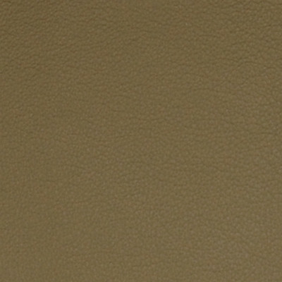 A7723 Somber Taupe Fabric