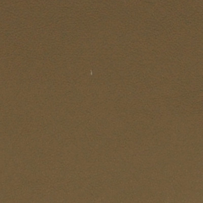 A7726 Ginger Root Fabric