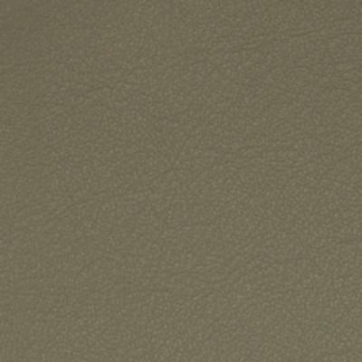 A7728 Gray Dawn Fabric