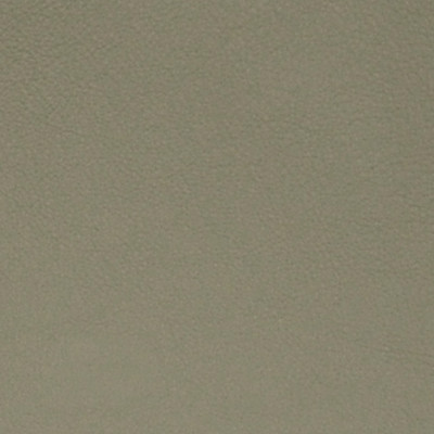 A7729 Somber Grey Fabric