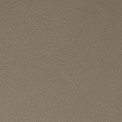 A7731 Shadow Fabric