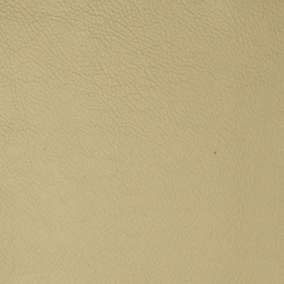 A7741 Champagne Fabric