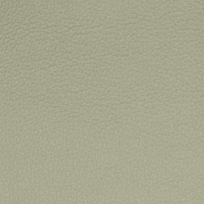 A7750 Pumas Fabric