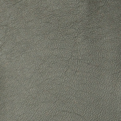 A7754 Silver Fabric