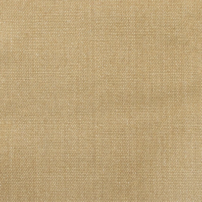 A7803 Camel Fabric