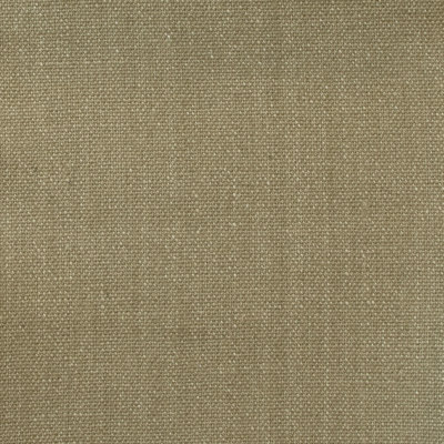 A7819 English Green Fabric