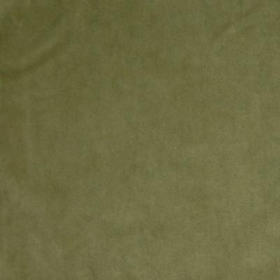 A7949 Bay Leaf Fabric