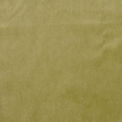 A7951 Green Tea Fabric