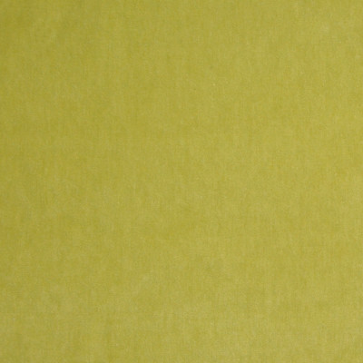 A7952 Chartreuse Fabric