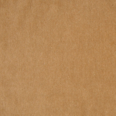 A7955 Camel Fabric