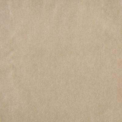 A7956 Tussah Fabric