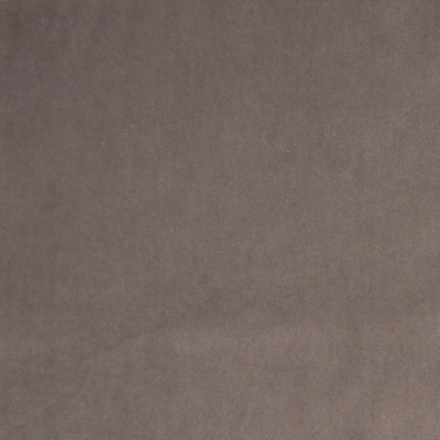 A7964 Mink Fabric