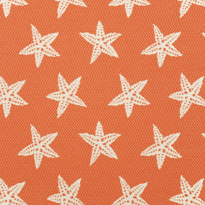 A8036 Firecracker Fabric