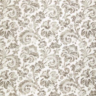 A8772 Dove Fabric