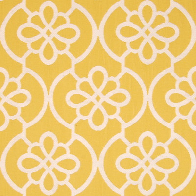 A8787 Lemon Fabric
