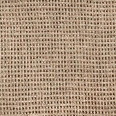 A8906 Oatmeal Fabric