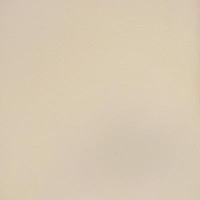 A9202 Vanilla Fabric