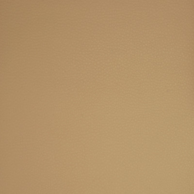 A9204 Taupe Fabric