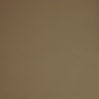 A9205 Taupe Fabric