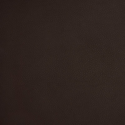 A9213 Chestnut Fabric