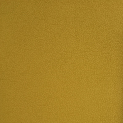 A9222 Citron Fabric