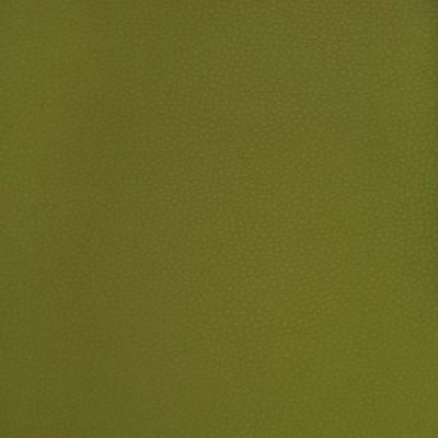 A9223 Sprig Fabric