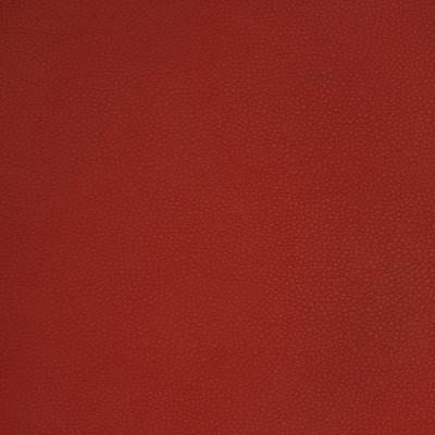 A9224 Rust Fabric