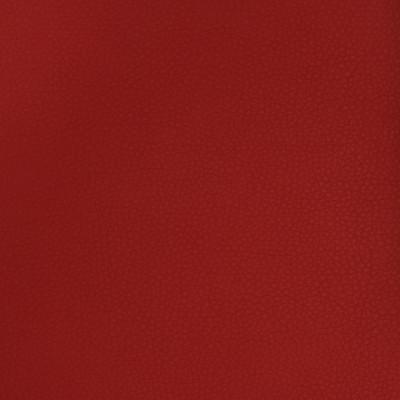 A9225 Garnet Fabric