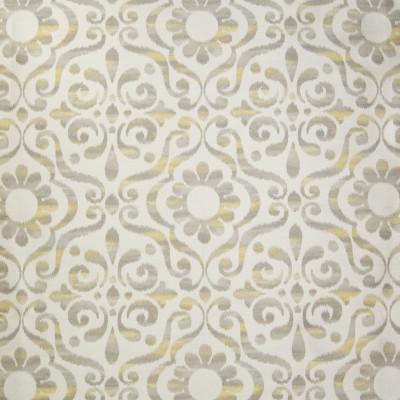 B1027 Sunshine Fabric