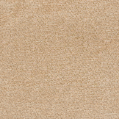 B1254 Raffia Fabric
