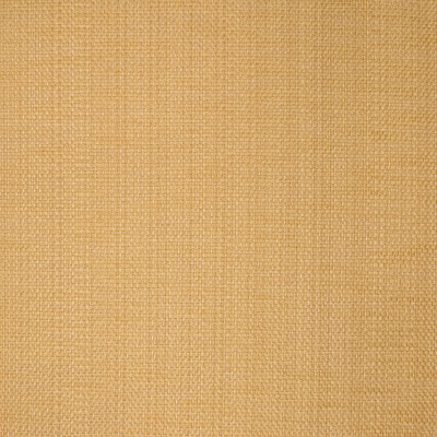 B1406 Sisal Fabric