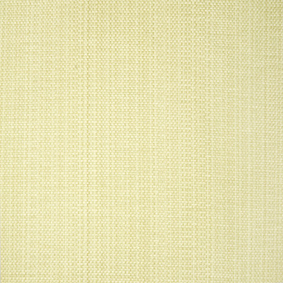 B1416 Lichen Fabric