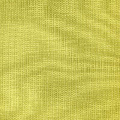 B1417 Lime Fabric