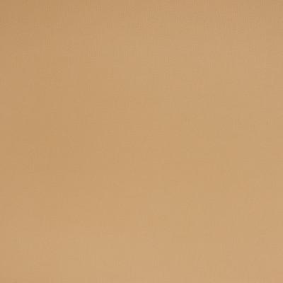 B1565 Sundance Sand Fabric