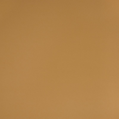 B1566 Sundance Bisque Fabric